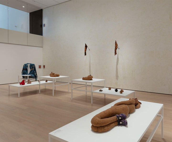 Installation view of Projects: Gabrielle L'Hirondelle Hill, The Museum of Modern Art, New York, April 25, 2021 – August 15, 2021. © 2021 The Museum of Modern Art. Photo: Denis Doorly