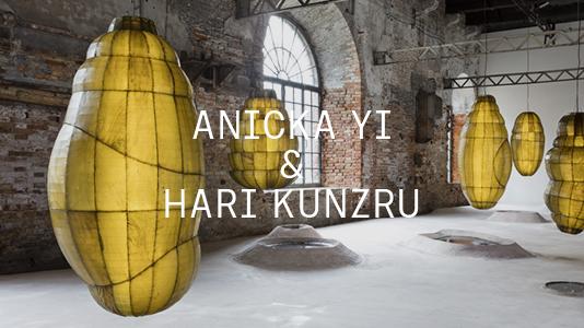 Anicka Yi