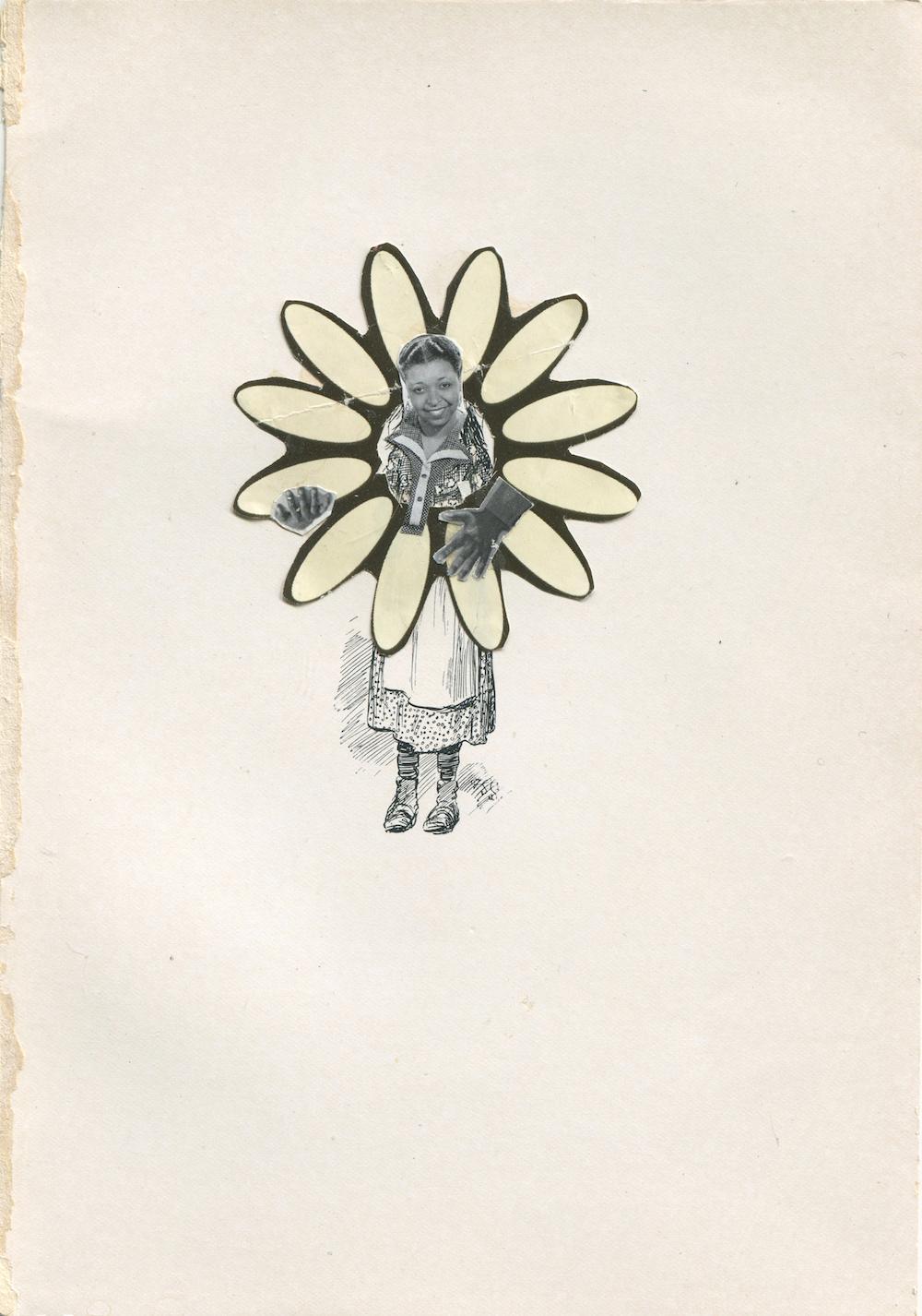 Ina Archer Petunia Flower (Ethel Waters)(2020)