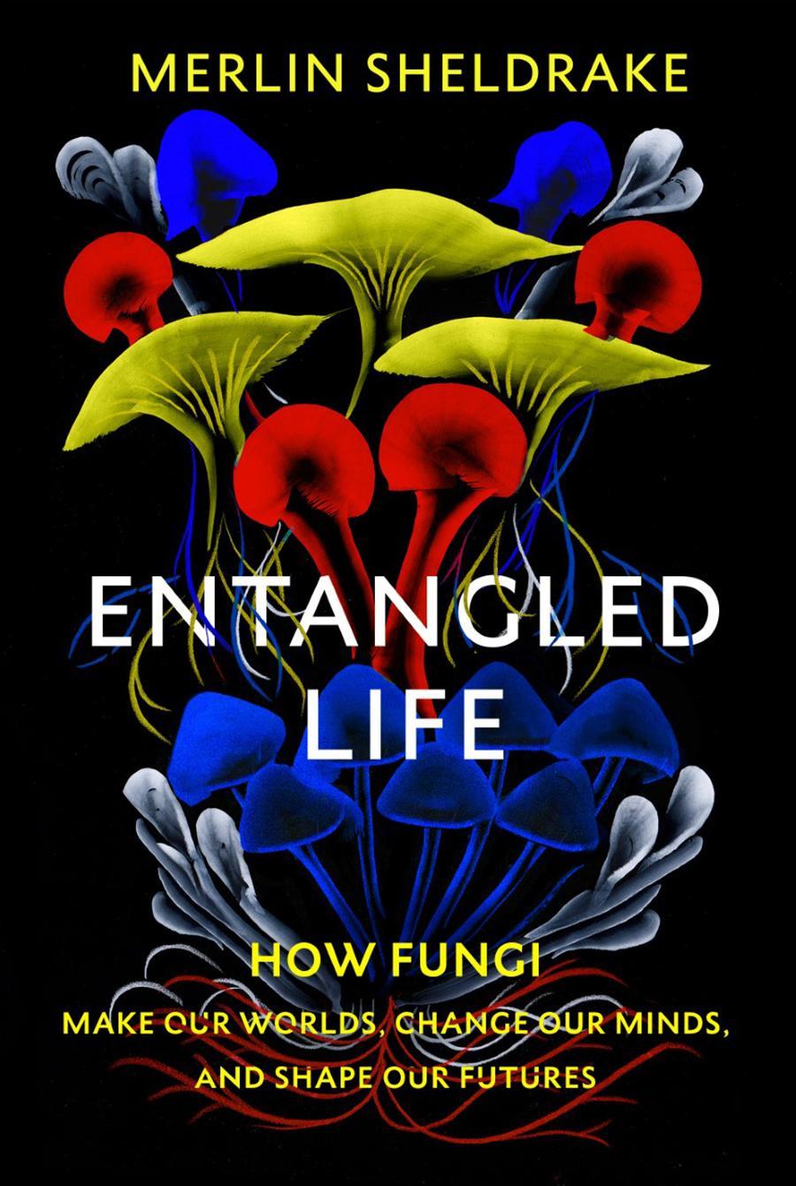 entangled-life-merlin-sheldrake