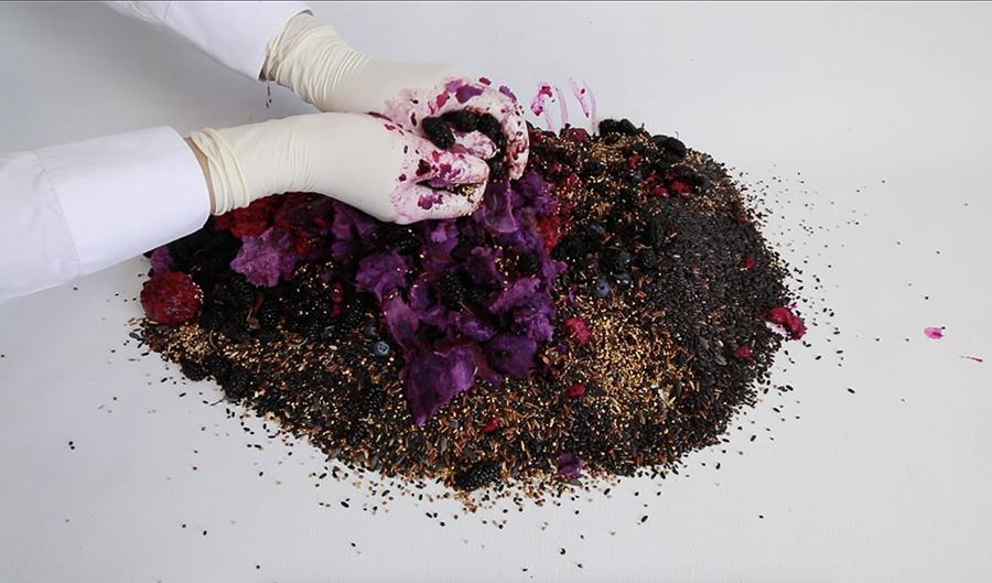 li gang purple