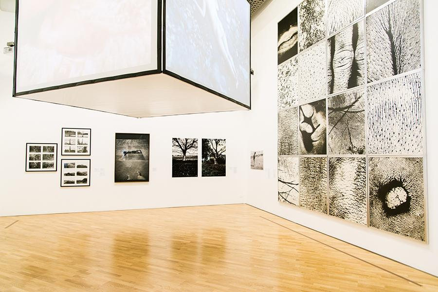 radical-women-installation-view-2018
